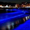 写真: NIGHT WAVE