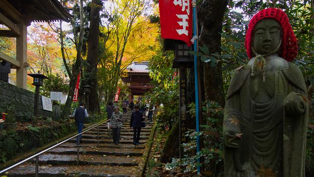 龍蔵寺の秋彩1