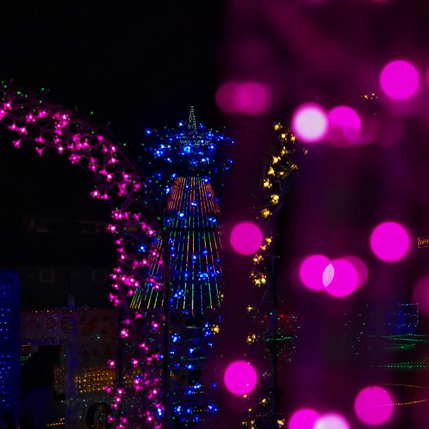光りの祭典・2-1