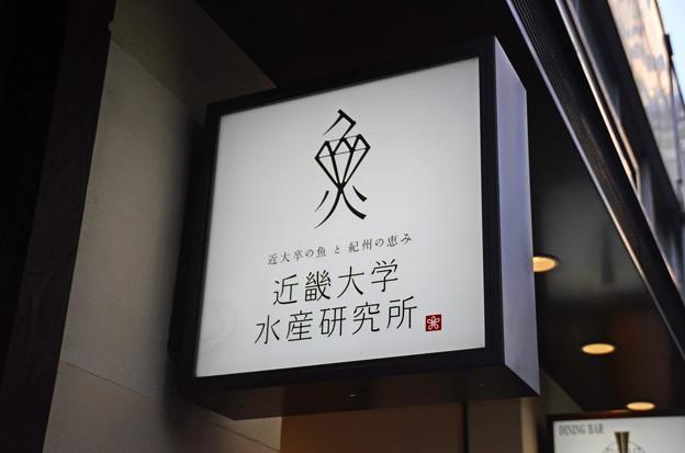 近畿大学水産研究所(銀座店)(1)
