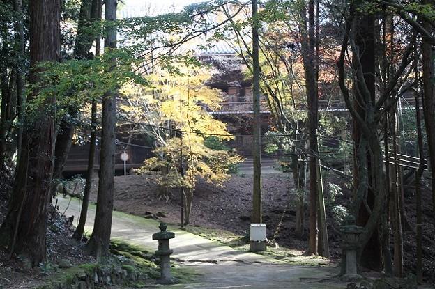 書写山円教寺(兵庫県姫路市)(7)