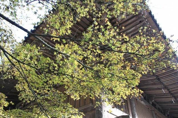 書写山円教寺(兵庫県姫路市)(8)