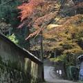 写真: 書写山円教寺(兵庫県姫路市)(10)