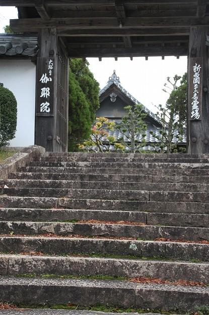 伽耶院(兵庫県三木市)(2)