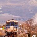 写真: 雪無き会津を走る