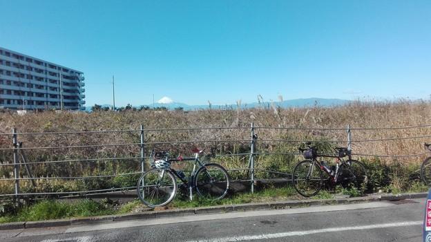 長井から富士山も