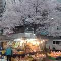 写真: 移動八百屋と桜