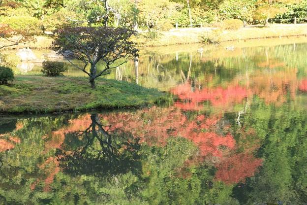 池に映る紅葉