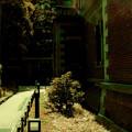 Photos: 赤レンガの街