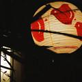 写真: 先斗町の夜