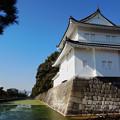 Photos: 白の砦
