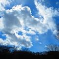 ちぎれそうな雲