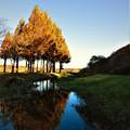 写真: 紅葉の有る風景 12