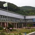 道の駅「保田小学校」 (1)