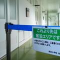 道の駅「保田小学校」 (7)