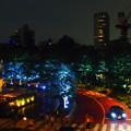 写真: 六本木の夜景