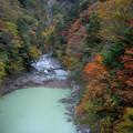 写真: 高瀬渓谷