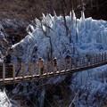 写真: 尾ノ内渓谷の氷柱