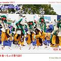 写真: REDA 舞神楽_25 - かみす舞っちゃげ祭り2011