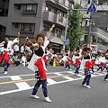 風来坊_16 - 第8回 浦和よさこい 2011