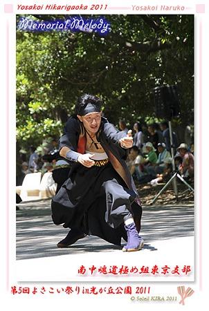 南中魂道極め組東京支部_16 - よさこい祭りin光が丘公園2011