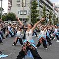 写真: 朝霞鳴子一族め組_17 - 第8回 浦和よさこい2011