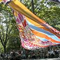 Photos: リゾンなるこ会飛鳥_17 -  「彩夏祭」 関八州よさこいフェスタ 2011