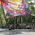 Photos: リゾンなるこ会飛鳥_18 -  「彩夏祭」 関八州よさこいフェスタ 2011