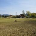 Photos: 羊の丘