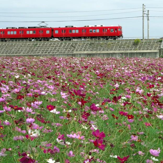 秋の名鉄電車