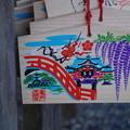 写真: 亀戸天神社 (9)