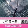 2016/09上旬・歴史・160810171807猫H写真