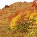 Photos: 秋の谷川岳からーその1