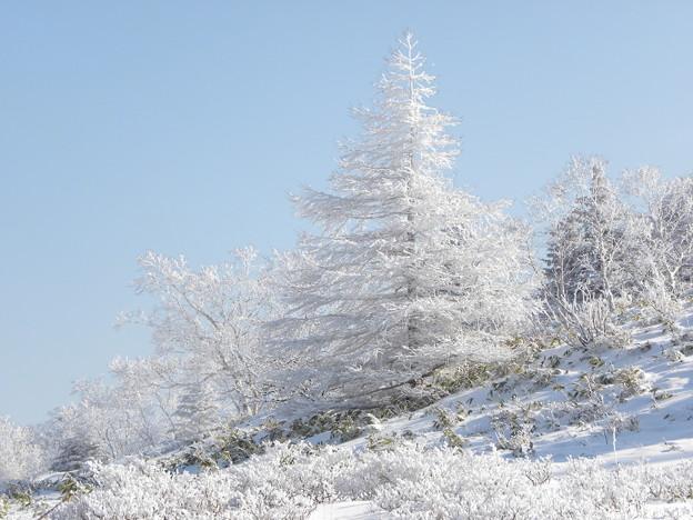 Photos: 白銀の山景