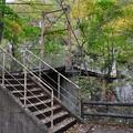 花巻温泉 釜淵の滝・紅葉橋 09
