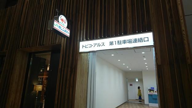 秋田駅リニューアル 2017-04-01 31