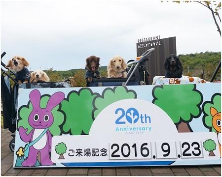 2016100608