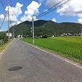 写真: IMG_0095