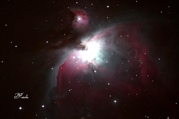 写真: オリオン大星雲