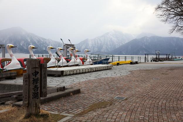 中禅寺湖観光1