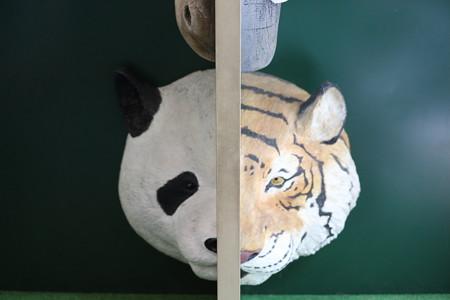 王子動物園6