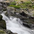 阿弥陀ヶの滝23