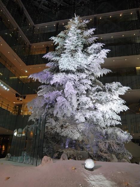 KITTEのクリスマスツリー(白)