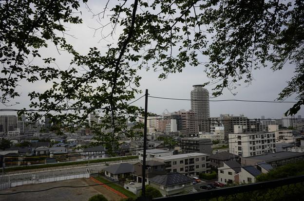 丘から見る聖蹟桜ヶ丘駅