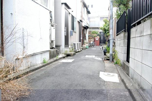 Photos: 平井ロケ_5095