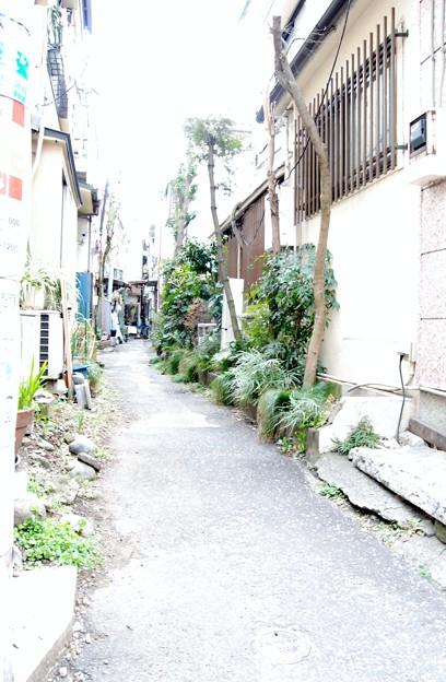 平井ロケ_5108