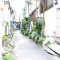 Photos: 平井ロケ_5108