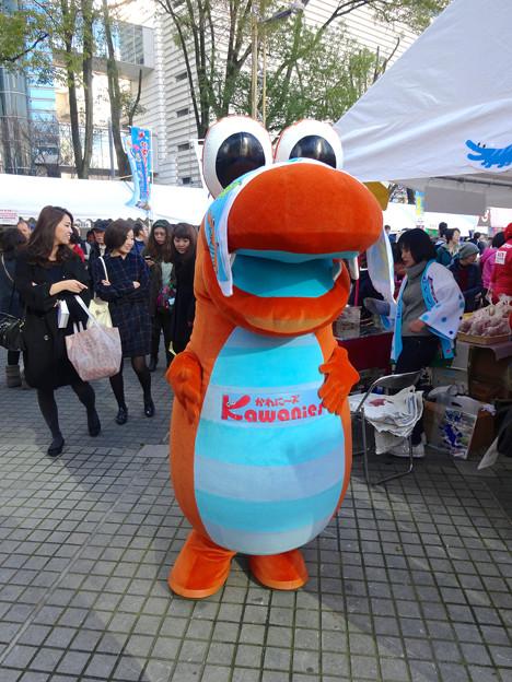 旅まつり名古屋 2015 No - 081:徳島県徳島市とその周辺地域をPRするキャラ「かわに~ズ」