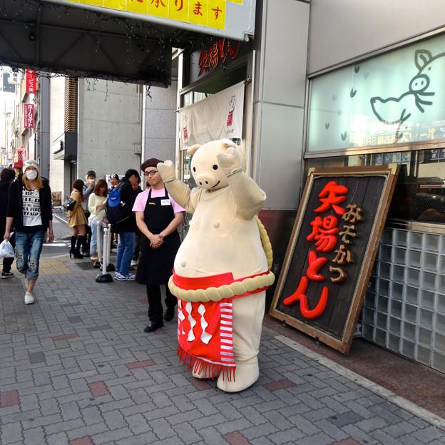 Photos: 矢場とんのマスコット「ブーちゃん」が店頭でPR! - 3