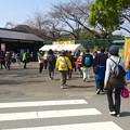 写真: 名古屋城へと向かう人と「駅ちかウォーキング」で賑わう東門 - 2